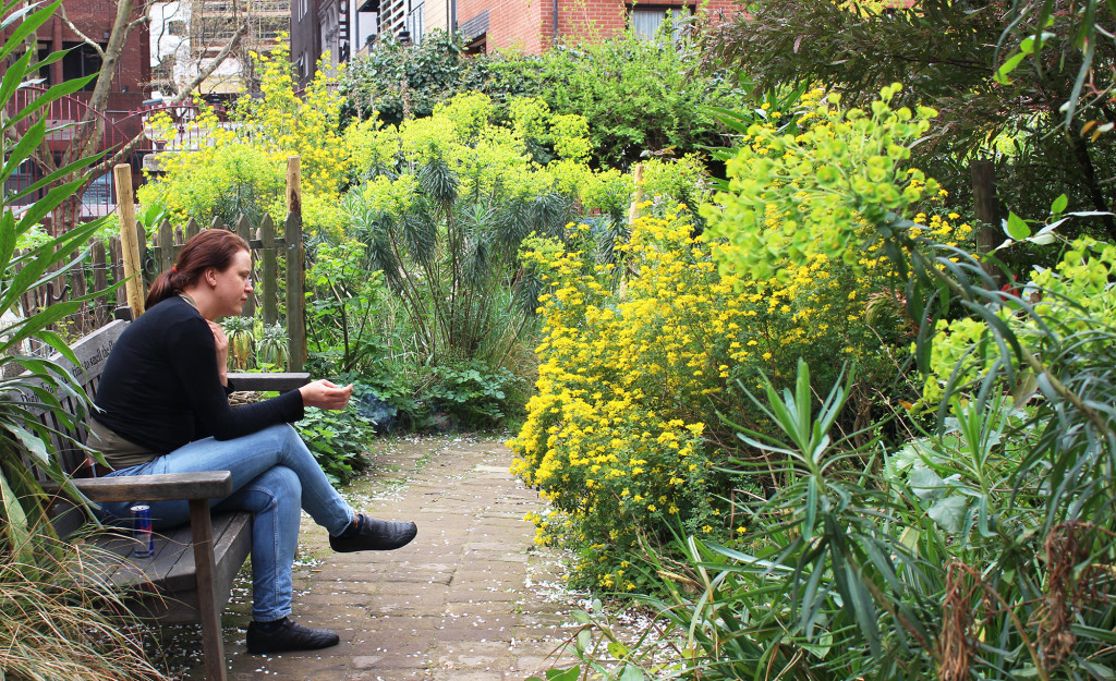 The Phoenix Garden (in Stacey Sreet) is a community garden and open space in Central London.
