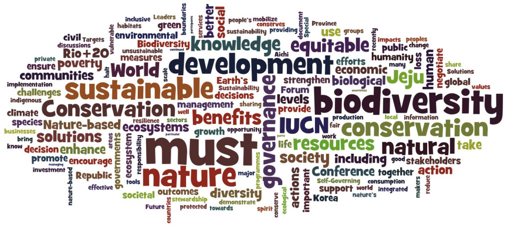 2012 Jeju Declaration by the IUCN President (wordled)