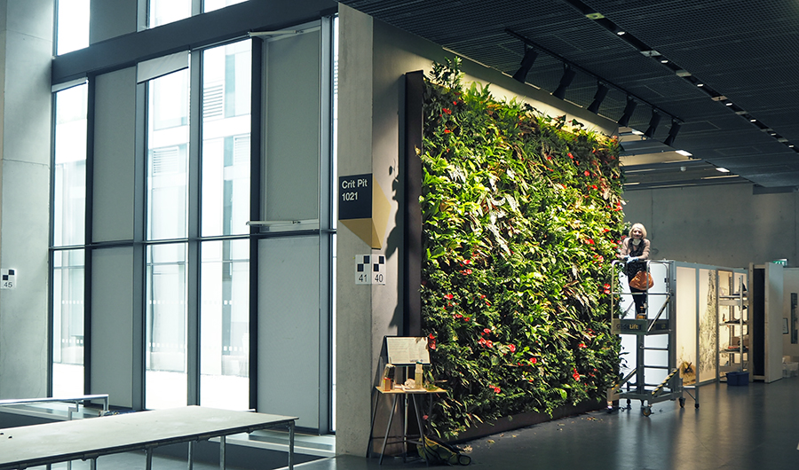 NEMEC green living wall in the design studios at the University of Greenwich
